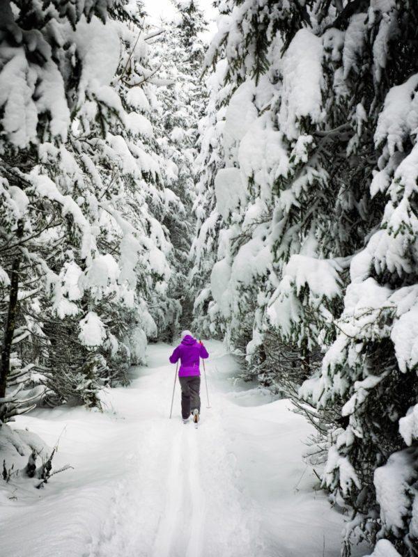 Nordic Skiing Whitefish Montana