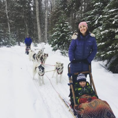 Sled Dog Riding Bigfork Montana